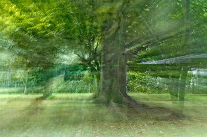 20120822-IMGP7763.jpg