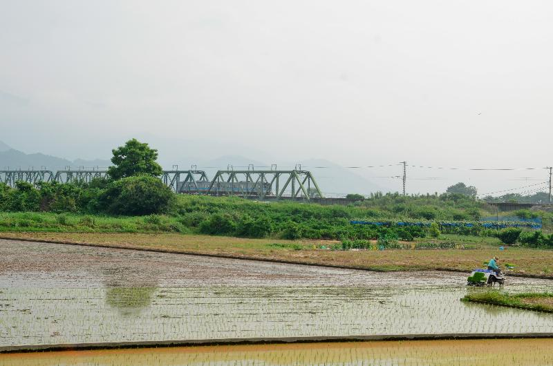西条市石田 田植え 風景