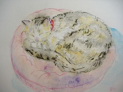 小さいベッドで寝る猫さん