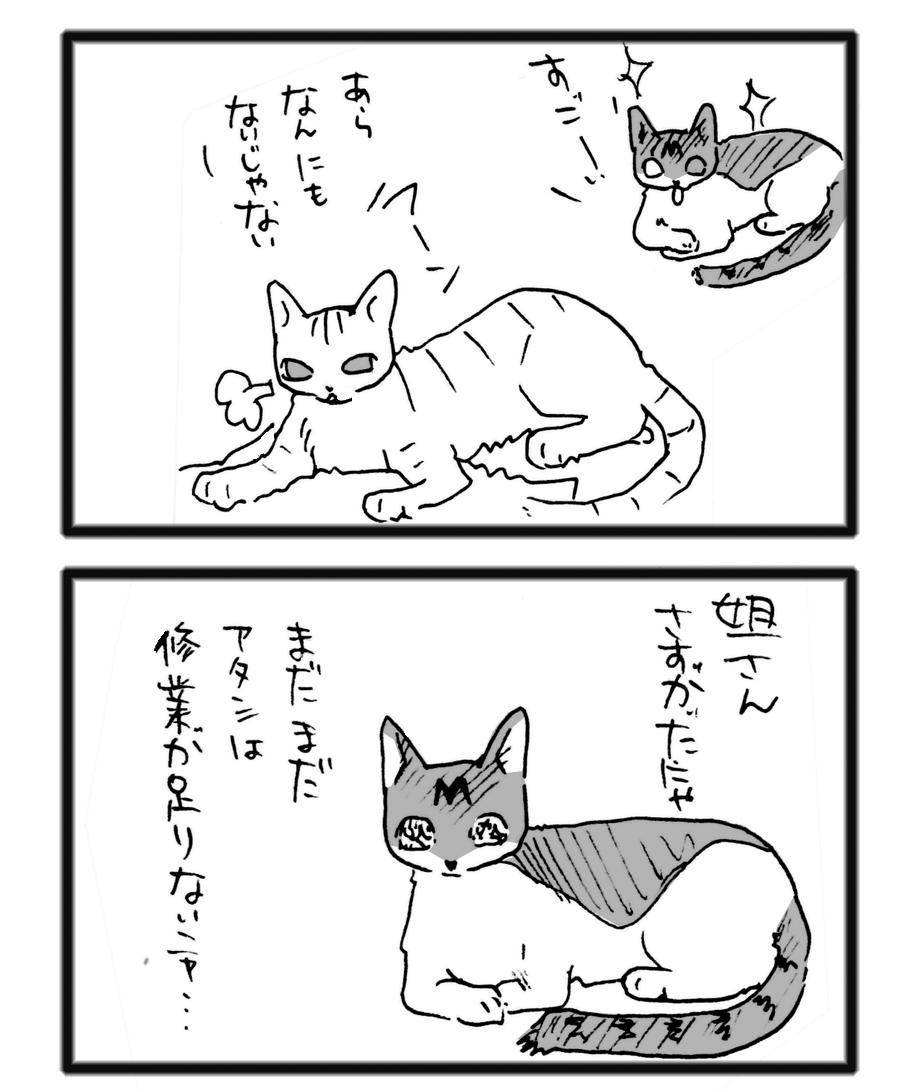 comic_13122304.jpg