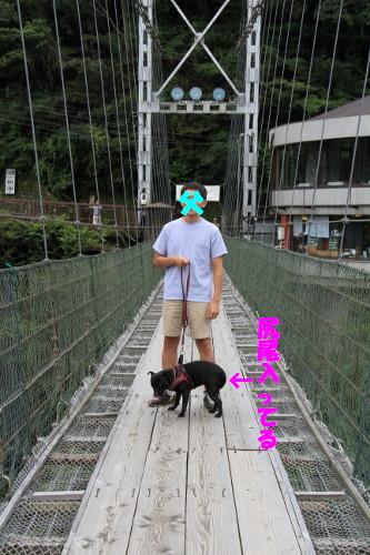 奈良和歌山6