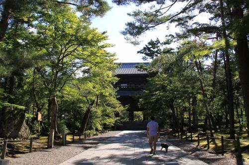 京都・白馬1