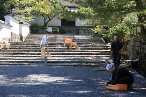 京都・白馬11