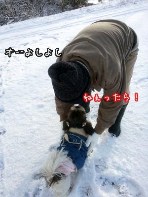 20121210_084111.jpg