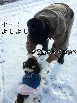 20121210_084113.jpg
