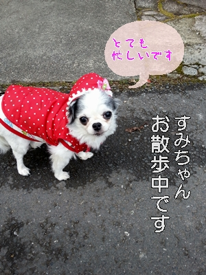 20130129_090746.jpg