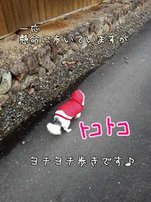 20130129_090812.jpg