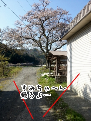 20130413_083328.jpg