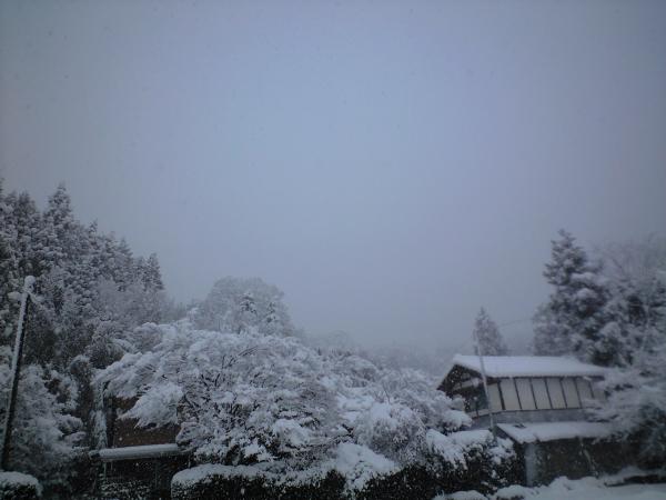 今日は黙々と除雪作業