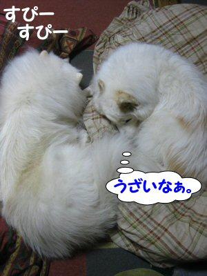 blog1301.jpg