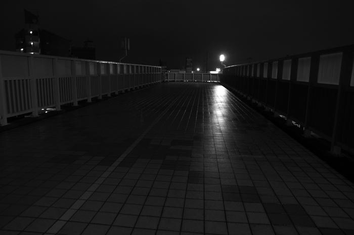 IMGP3101_R.jpg