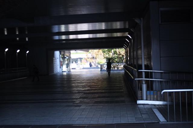 ペトリと新宿