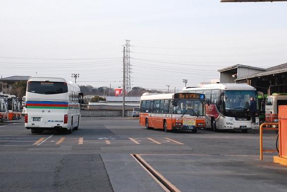 bus159.jpg
