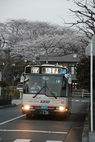 bus182.jpg