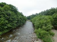 今日の美生川