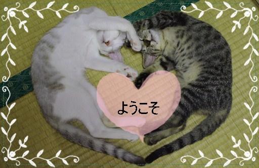 編集済~1