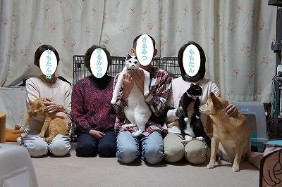 2012shougatu_20130106173841.jpg