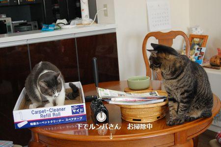 20120616kotetsumiikun.jpg