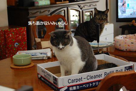 20120616kotetsumiikun2.jpg