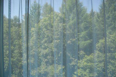 20120713hurano2.jpg