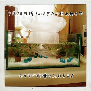2012920115350.jpg