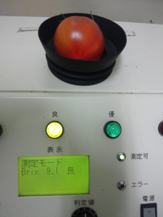 DSC_0380-1.jpg