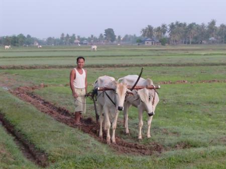 カンボジアLIFE
