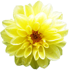 ki_20120428192007.png