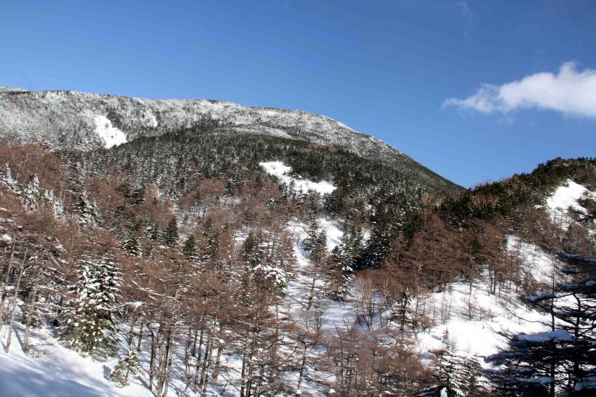 黒斑山へ(102)