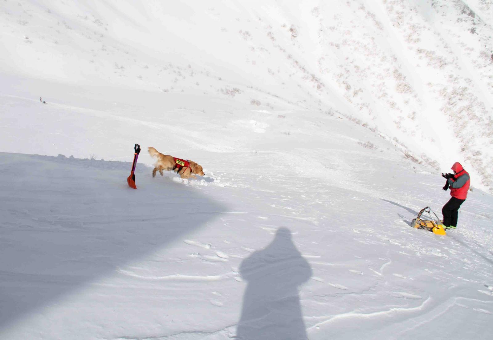 2013 全国雪崩 2月10日(135)