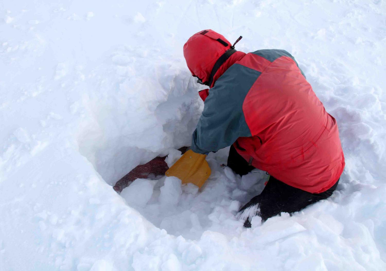 2013 全国雪崩 2月10日(153)
