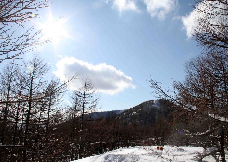 黒斑山へ(107)