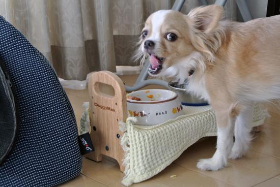 breakfast13014.jpg