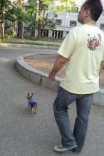 ラピと歩くパパ