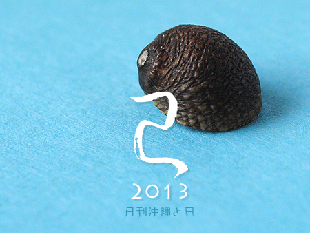 2013 ニューイヤー