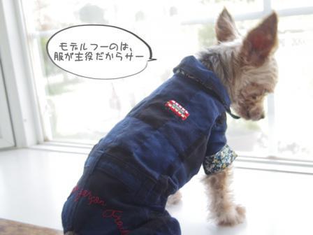 ファッションm4