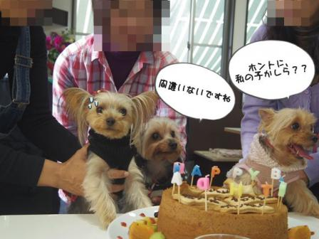 誕生会20124