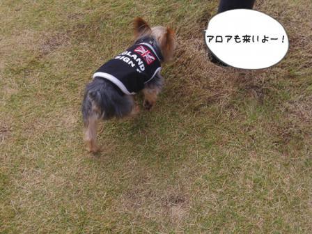 ばーすでぃ201210