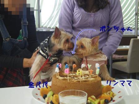 ばーすでぃ201212