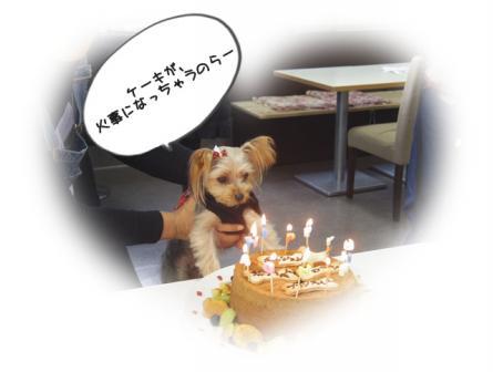 ばーすでぃ20128