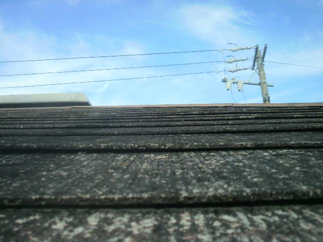 屋根の状態はカラーベストが変形して浮いているP1000350