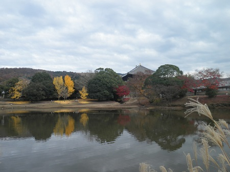 daibutuike_20141201180818b3d.jpg