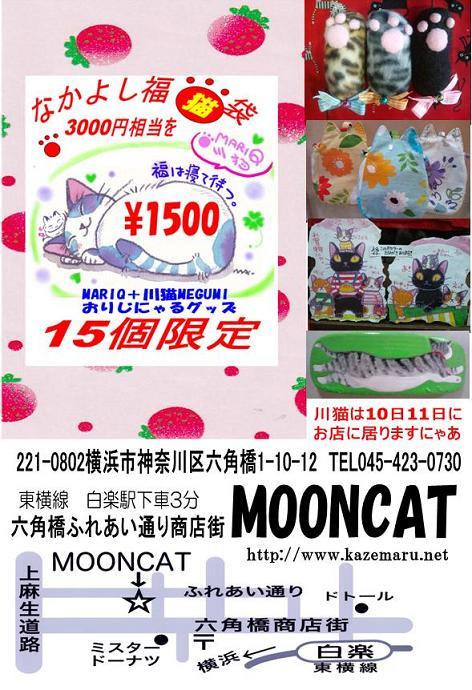 MOONCAT_20120525045252.jpg