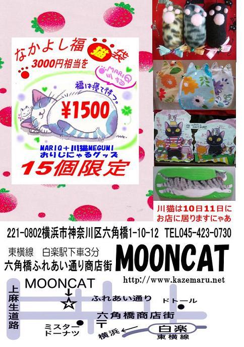 mooncat_20120609012157.jpg