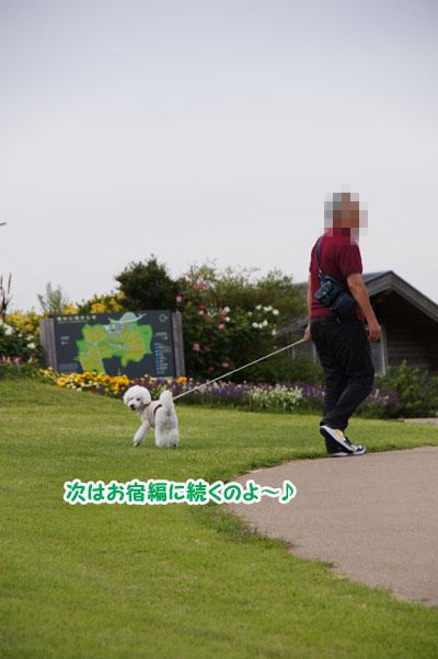 淡路島の旅♪ その2 公園編11