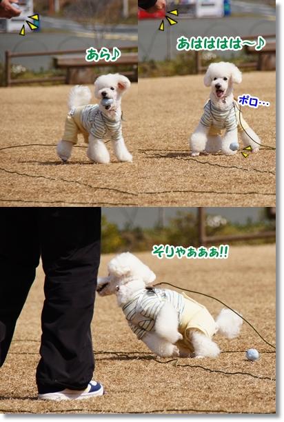 楽しいけどハード(笑)2