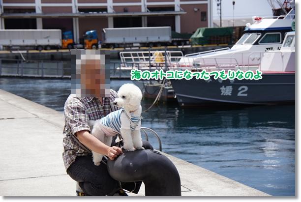 やっぱり海(笑)1