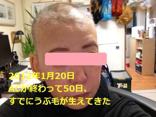 029-1use20120120.jpg