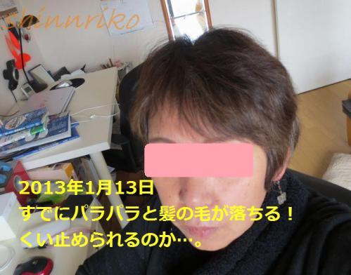 053-1use20130113.jpg