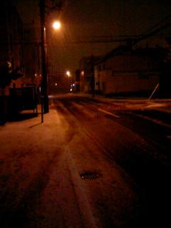 冬がはじまるよ2012(初雪が吹雪;)